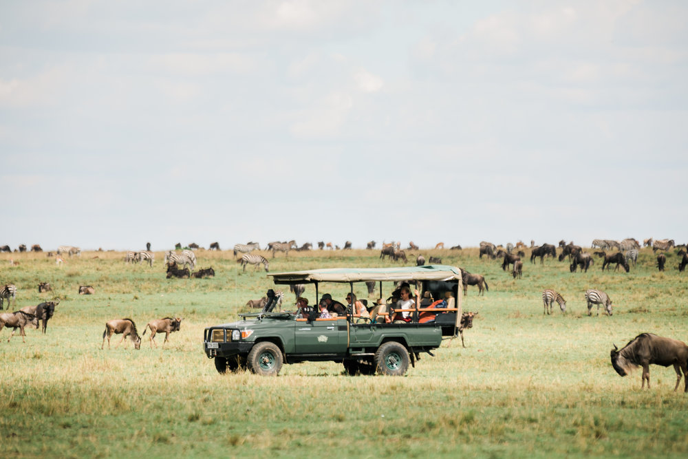 Day Long Game Ride - Maasai Mara ph. Valorie Darling