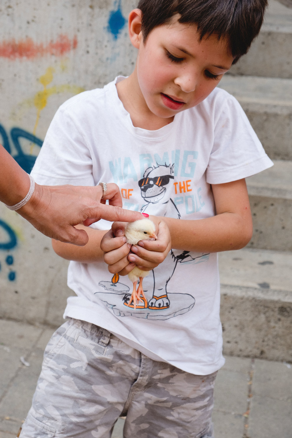 Local boy holding a baby chick in Medellin, Colombia