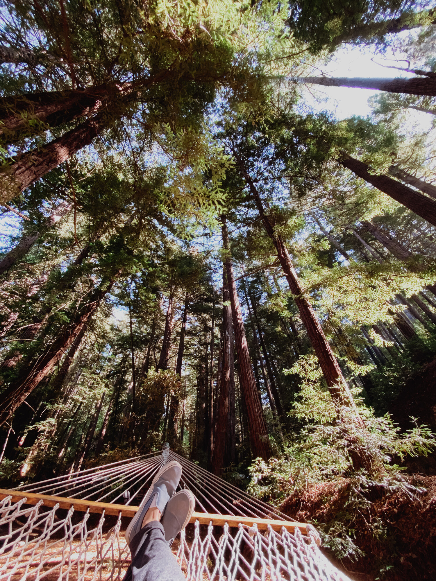 Hotel Diary What To Expect At Ventana Big Sur Everyday Pursuits