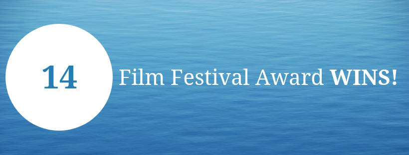 View The Awards The Film Has Received