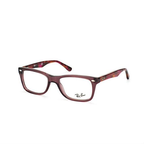 176d620b61 Ray-Ban RB5228 Opal Brown on Tortoise — SightDirect