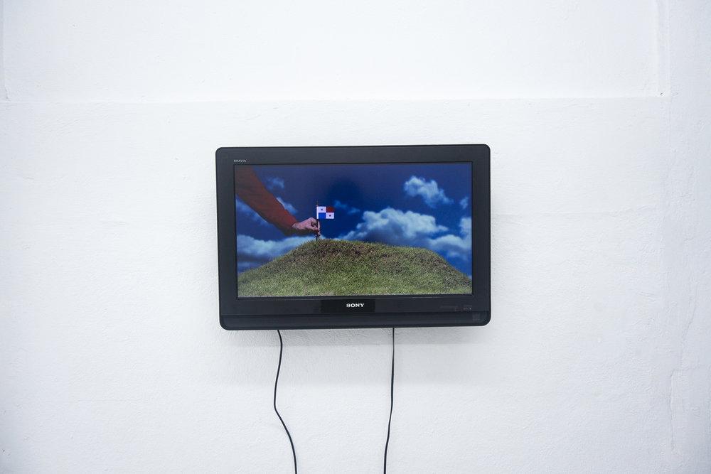 Jonathan Harker y Danna Conlon / Under the Rug (Bajo la alfombra), 2015 / Video / 2:46 min.