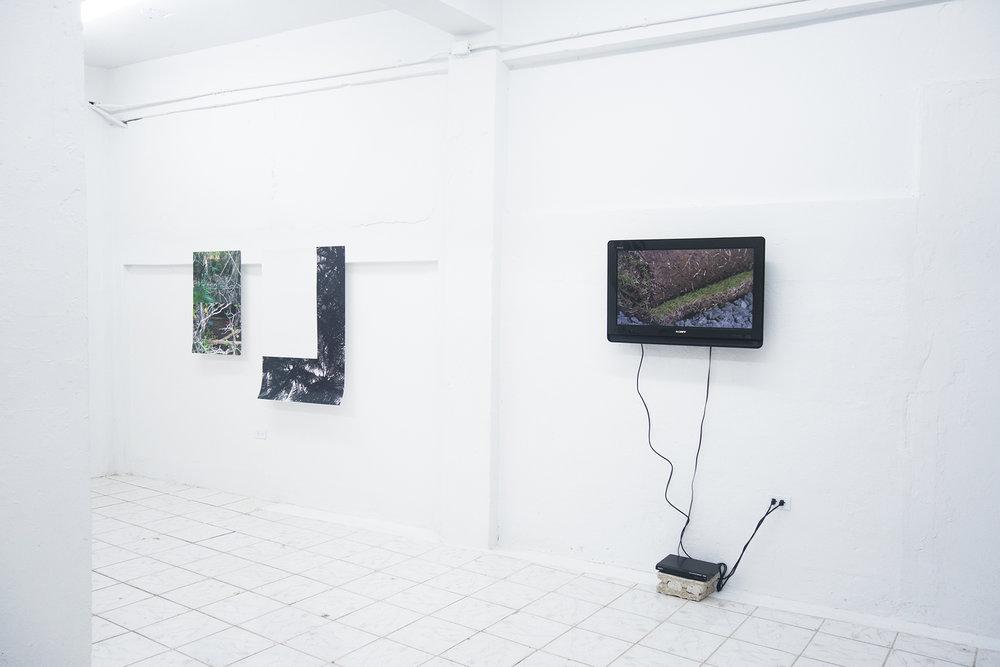 Pablo Guardiola / Jonathan Harker y Donna Conlon