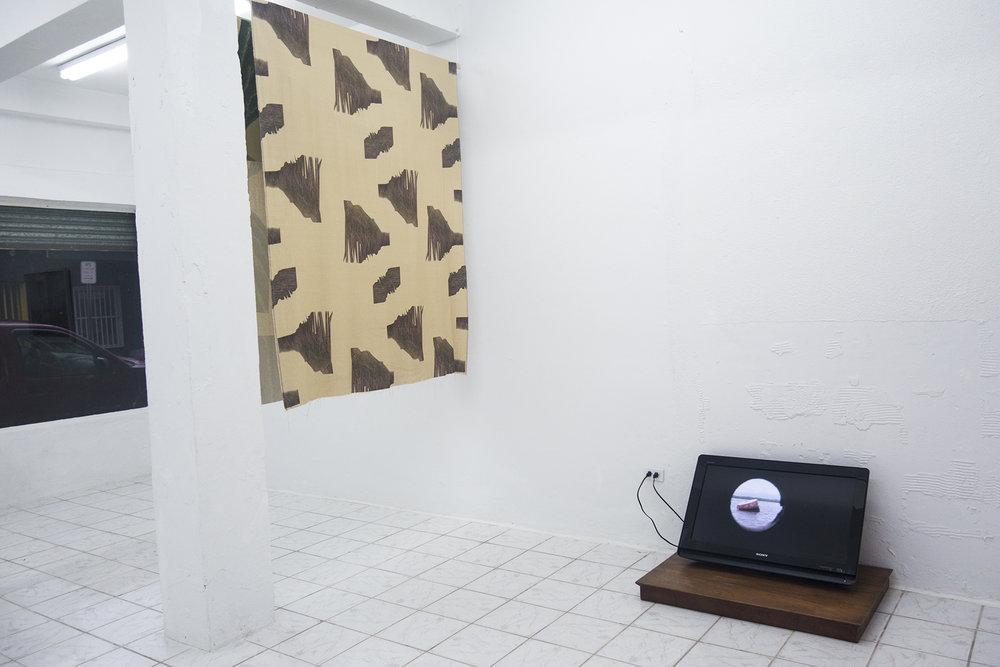Luisa Brandelli / Oscar Figueroa