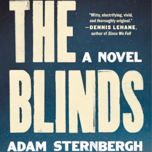 the blinds by adam sternbergh.jpg