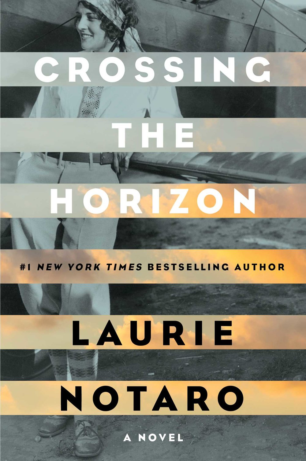Crossing the Horizon by Laurie Notaro.jpg
