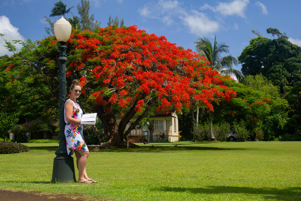 Literary Travel Guide: Kauai | Literary Events