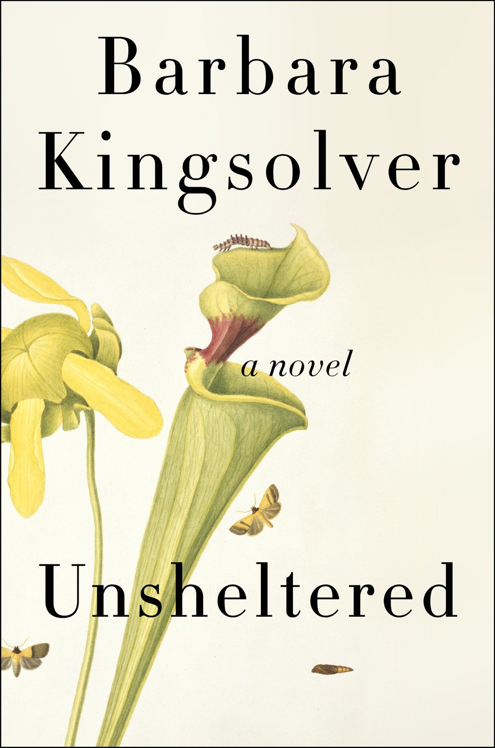 unsheltered by barbara kingsolver.jpg
