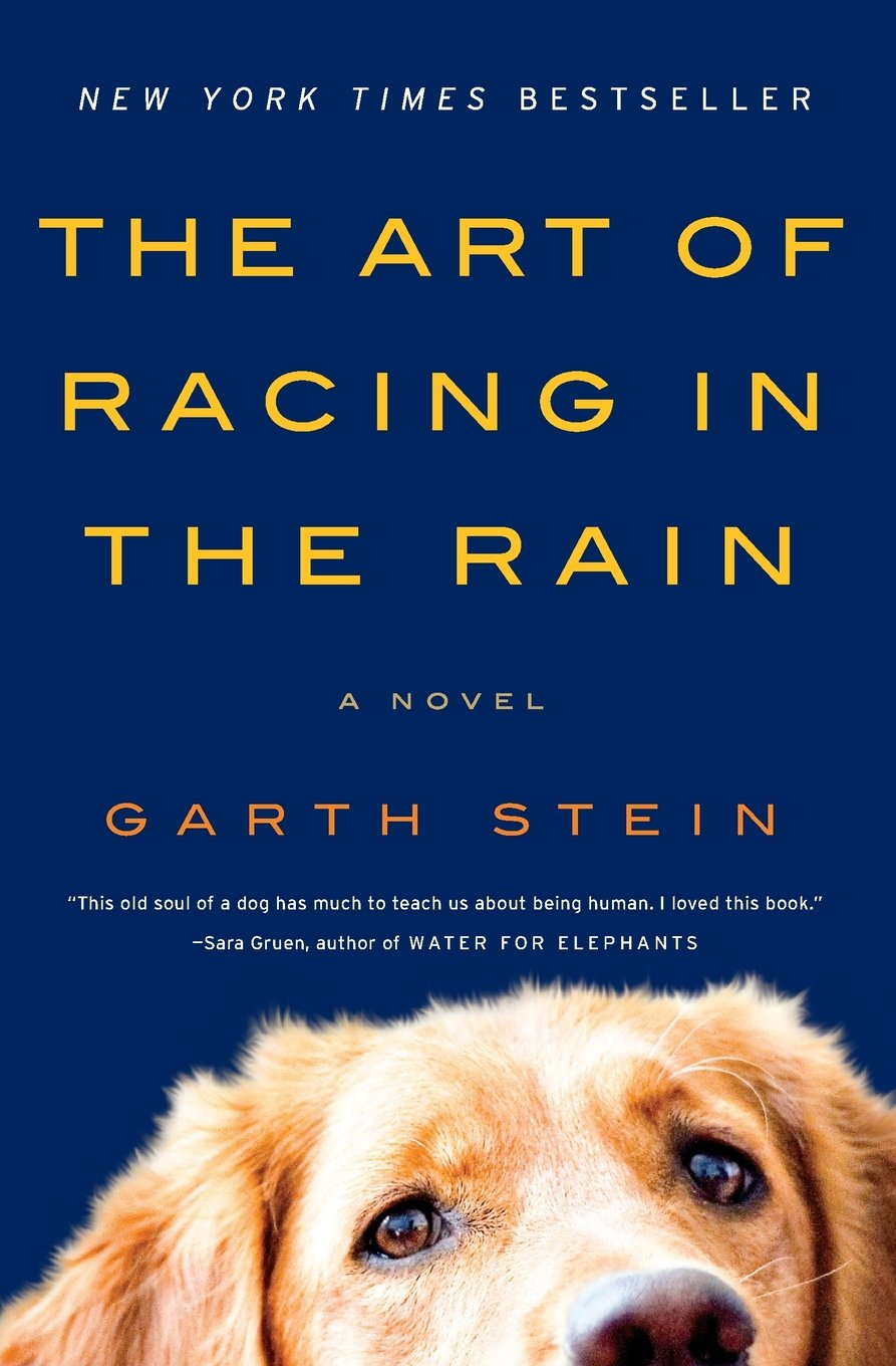 The Art of Racing in the Rain by Garth Stein.jpg