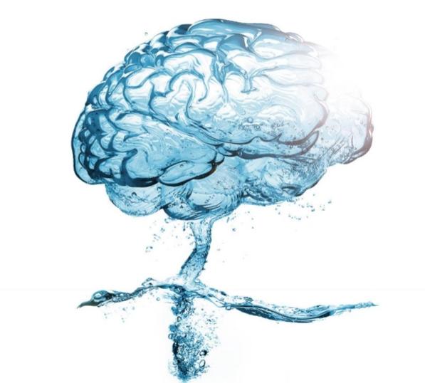 Water brain.jpg