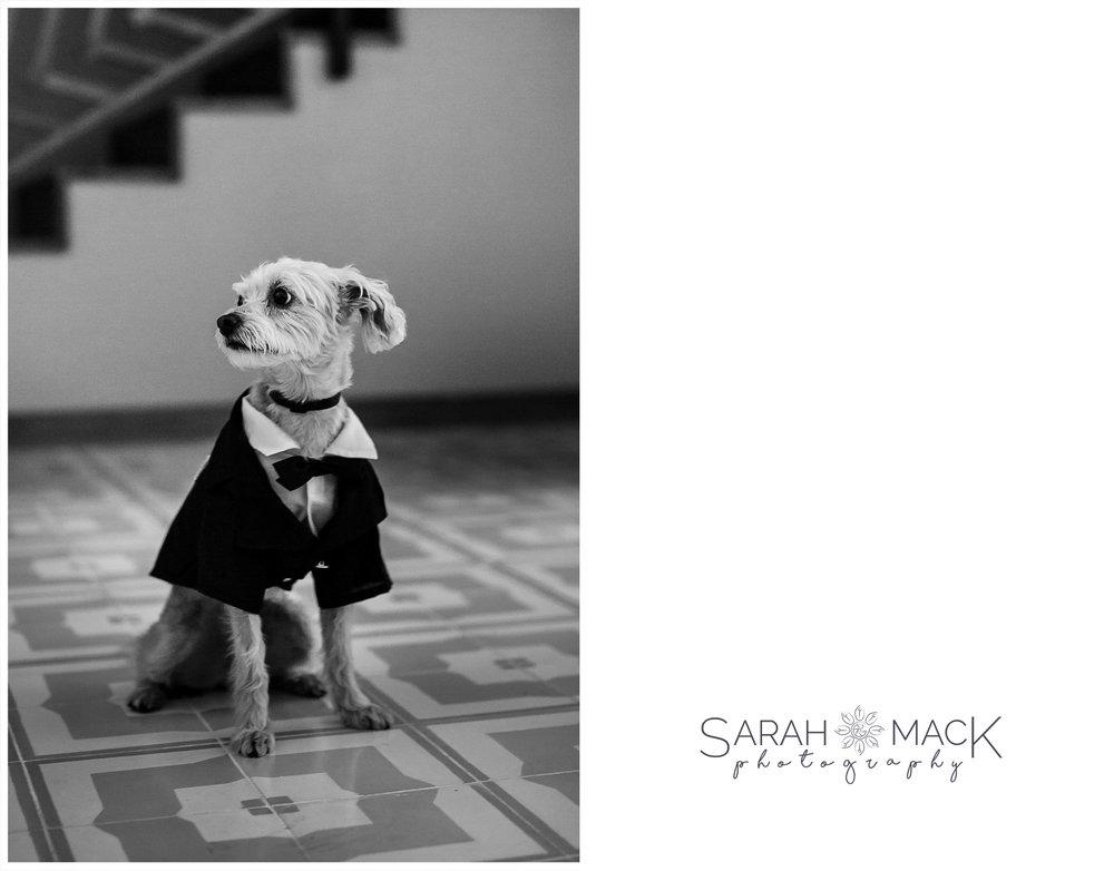 LJ-The-Cape-Hotel-Cabo-San-Lucas-Wedding-18.jpg