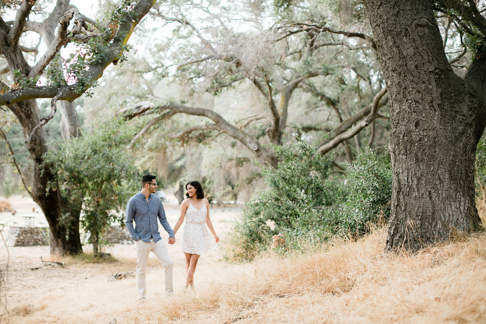 IA-Caspers-Park-Engagement-Photography 98.jpg