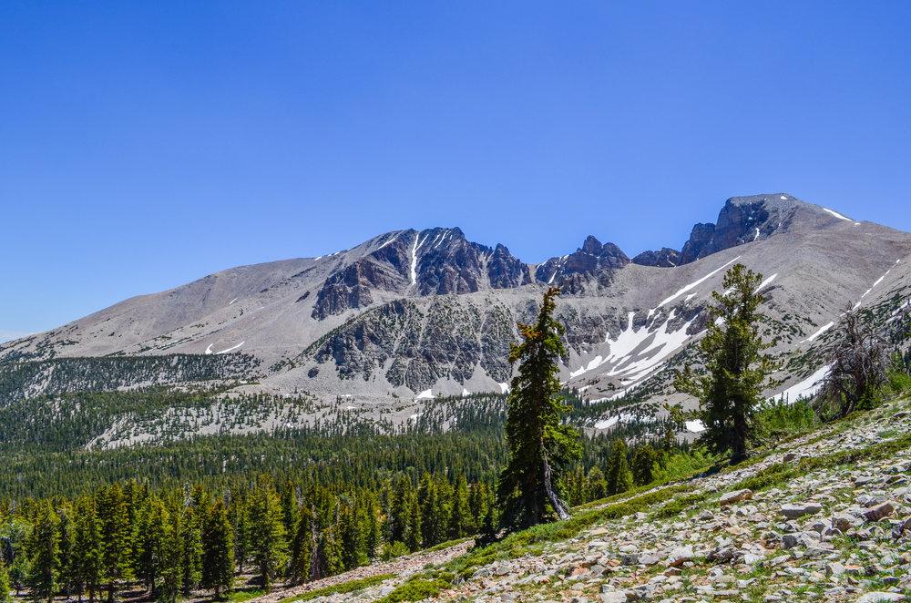 A glimpse of Wheeler Peak from 11,000 feet