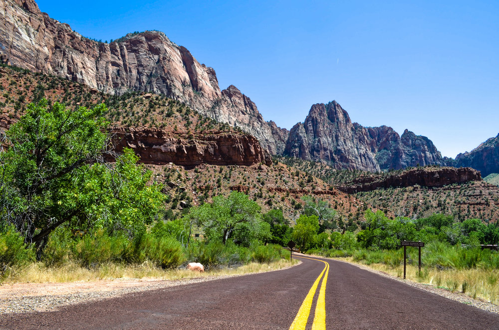 Crossing a service road on the Pa'rus Trail, Zion National Park