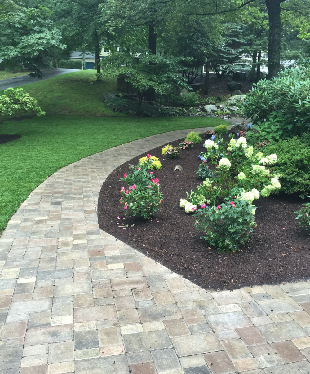 Landscape maintenance and s beautiful walkway in Wellesley, MA