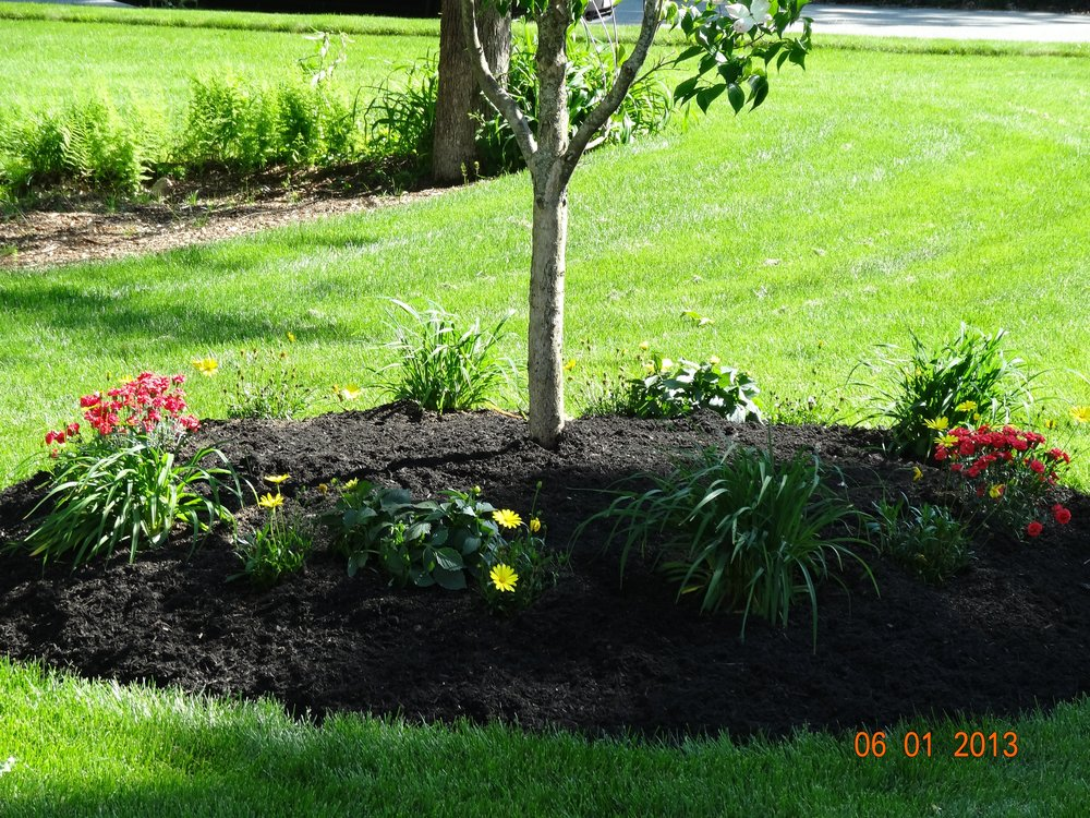 Professional landscape maintenance, including tree work services in Chestnut Hill, MA.