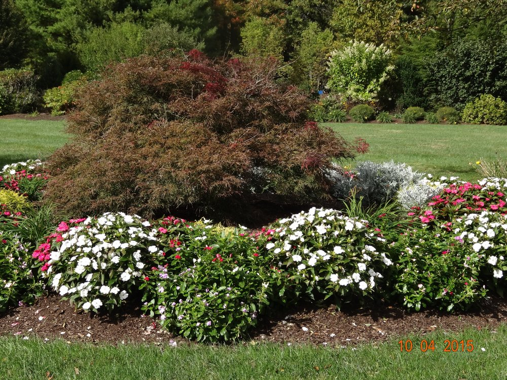Professional garden design and landscape maintenance services in Wellesley Massachusetts