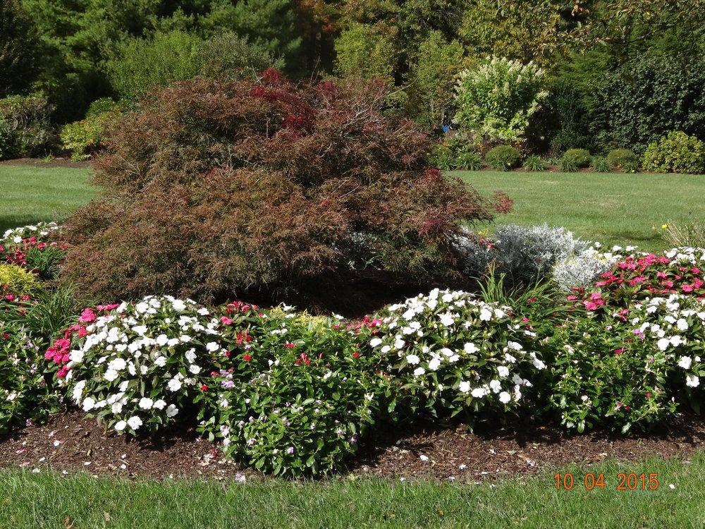 Garden Milford MA