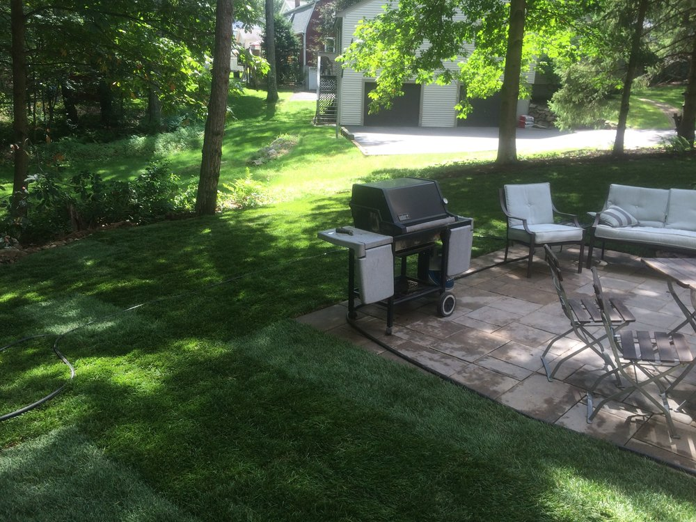 UndoRedoBoldItalicLinkRemove Text Style Experienced landscape design in Sharon, MA.