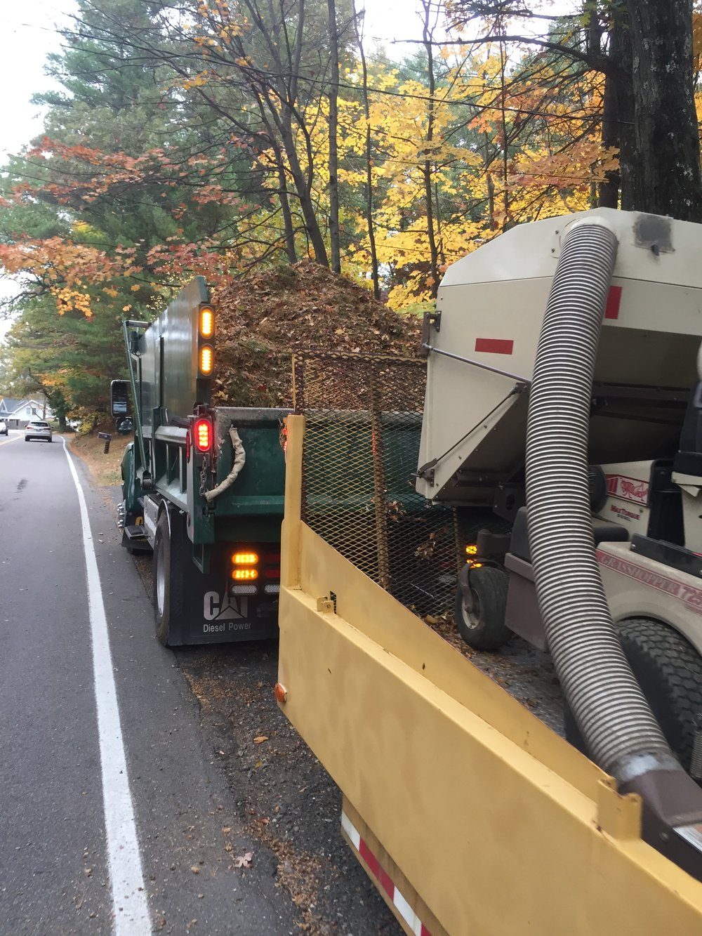 Landscape Maintenance: Don't Forget to Schedule Your Seasonal Fall Yard Cleanup in Millis MA