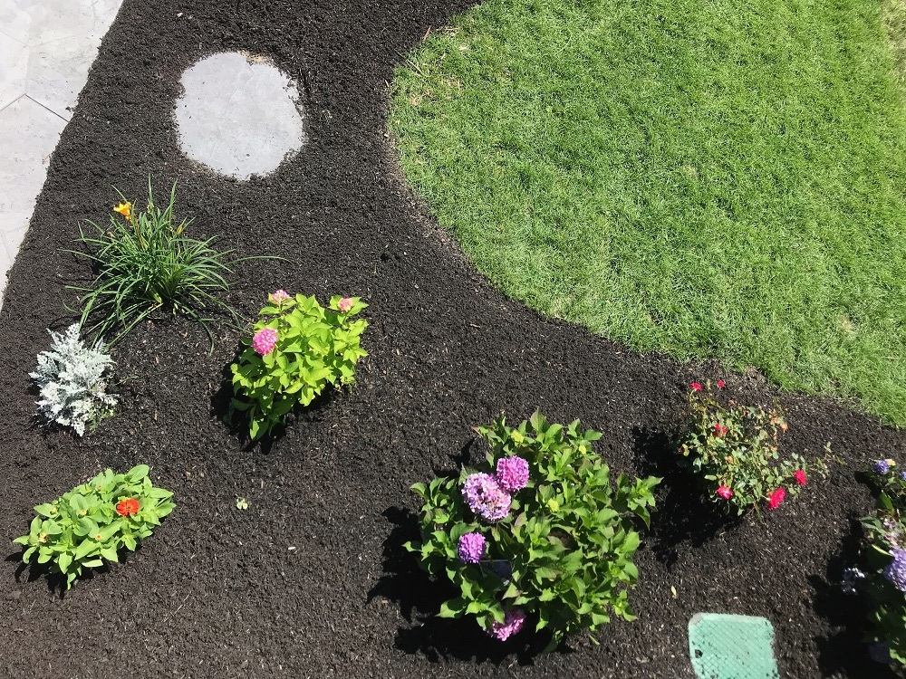 Residential landscape maintenance in Millis MA