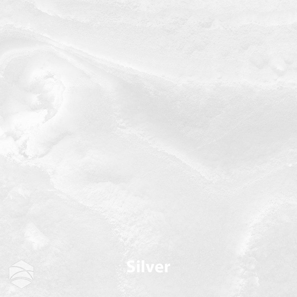 Silver_V2_12x12.jpg