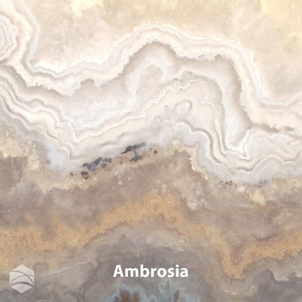 Ambrosia_V2_12x12.jpg