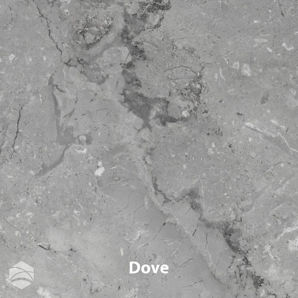 Dove_V2_12x12.jpg