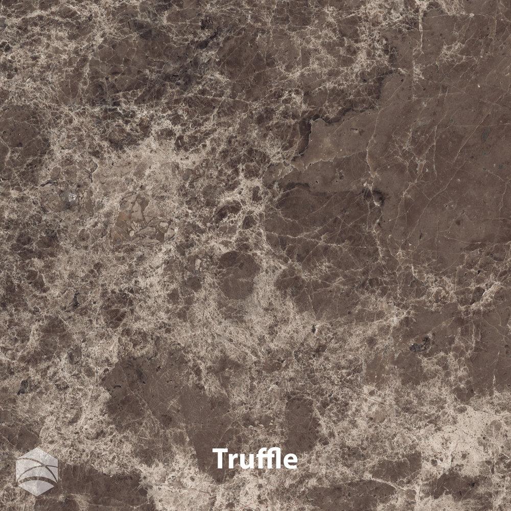 Truffle_V2_12x12.jpg