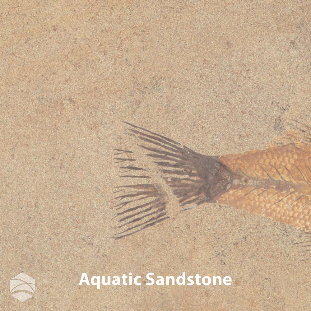 Aquatic Sandstone_V2_12x12.jpg