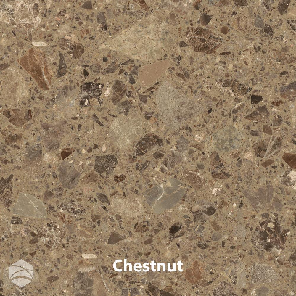 Chestnut_V2_12x12.jpg