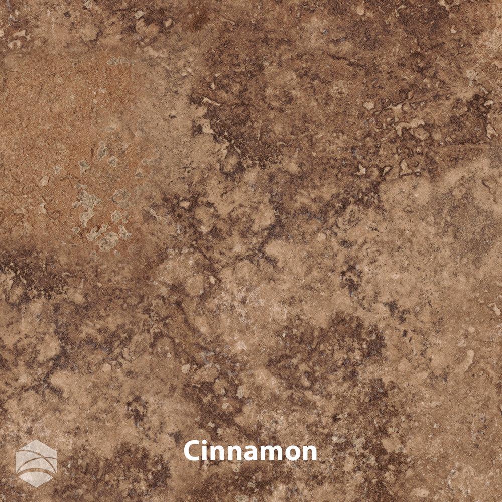 Cinnamon_V2_12x12.jpg