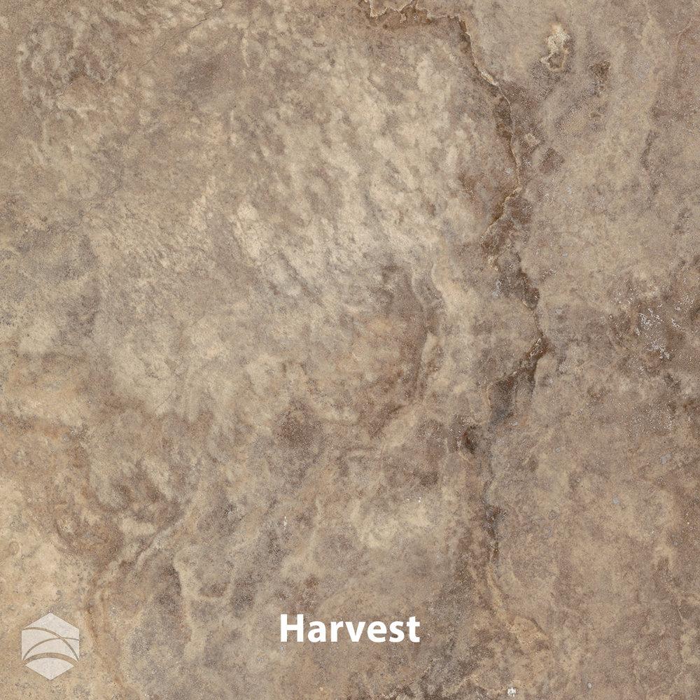 Harvest_V2_12x12.jpg