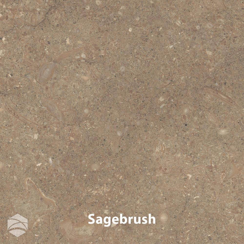 Sagebrush_V2_12x12.jpg
