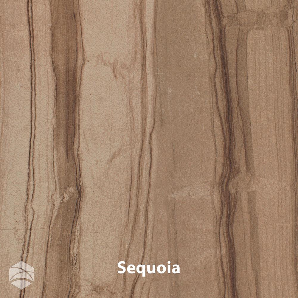 Sequoia_V2_12x12.jpg