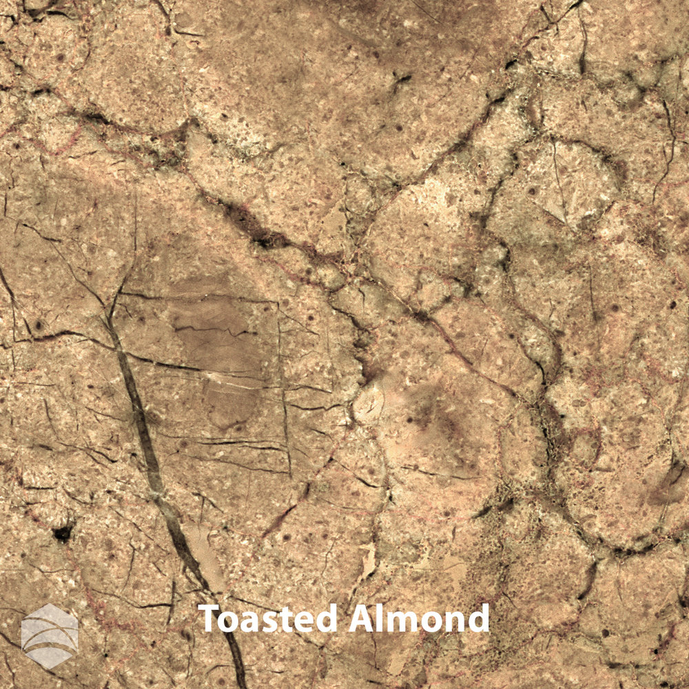 Toasted Almond_V2_12x12.jpg