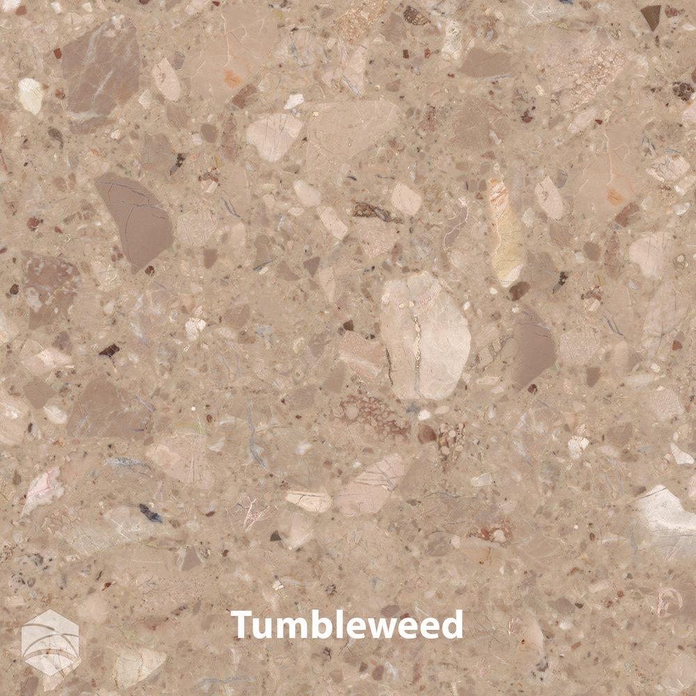 Tumbleweed_V2_12x12.jpg
