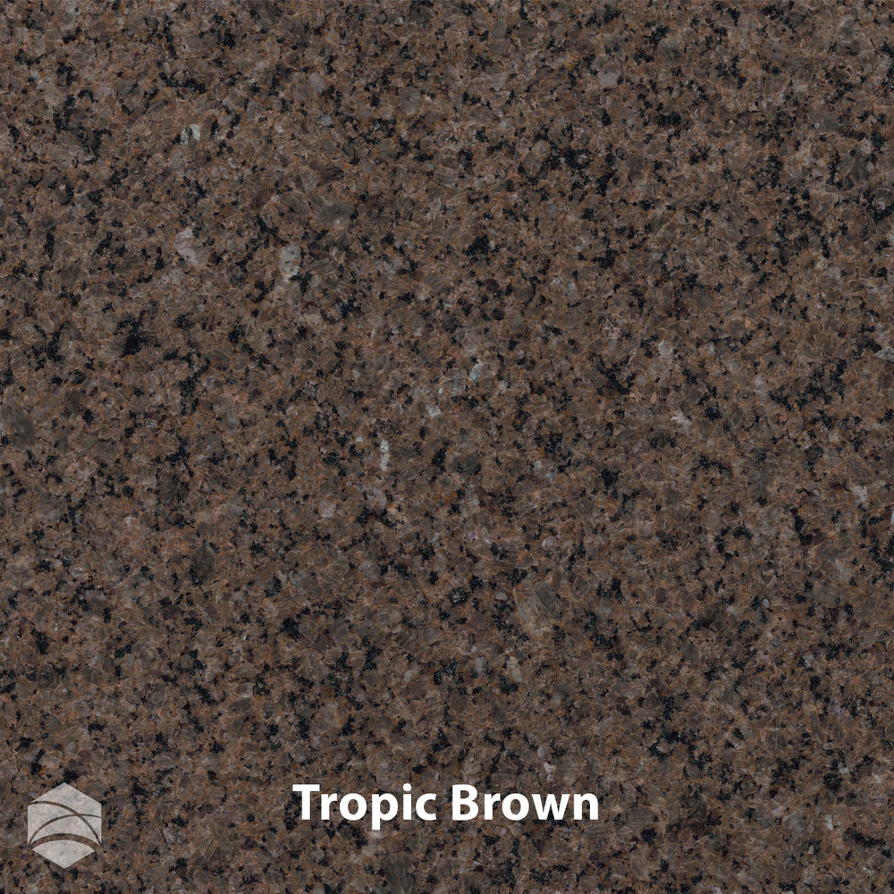 Tropic Brown_V2_12x12.jpg