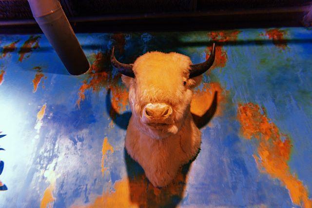 Say hello to our not-so-little friend. 👋🏽   #buffaloscafe #buffalomascot #designdetails #interiorinspo #GeorgiaFood #atleats #atlantaresaurants #georgiaeats #winglover #lovefood