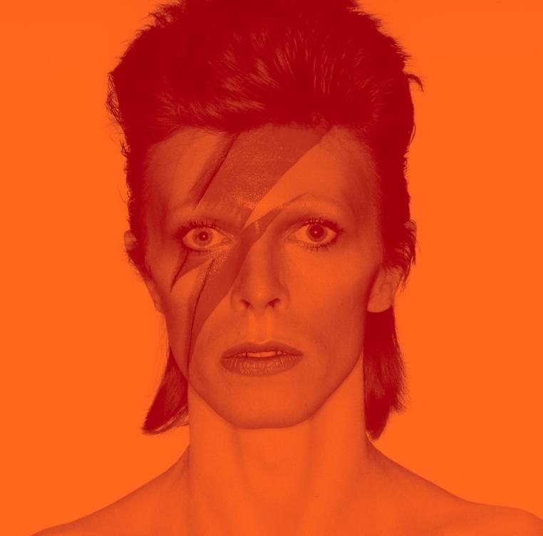 THE FOCUS. - The David Bowie exhibit