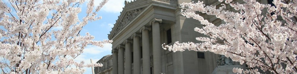 Visit_Brooklyn_Museum_cherryblossom_view_2005_01_Husted_banner_1440x360.jpg