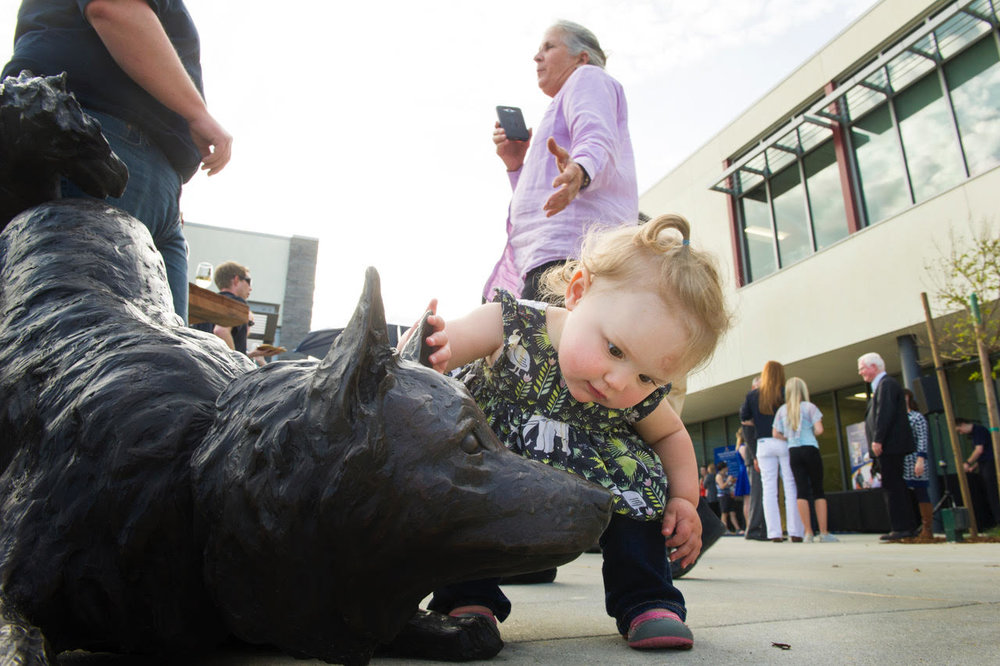 A young visitor during the open house for the new veterinary medicine administration building enjoys 'petting' one of the bronze sculptures.