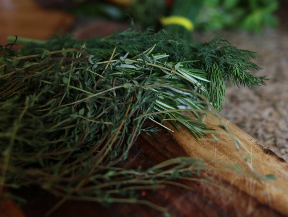Photo by Emily Adams