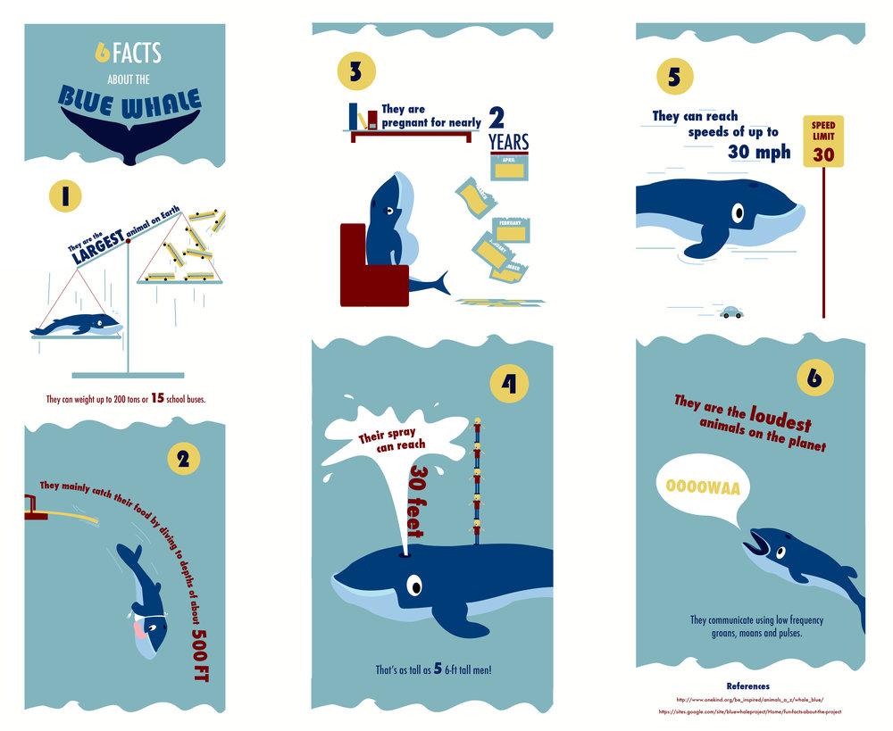 Whale2.jpg