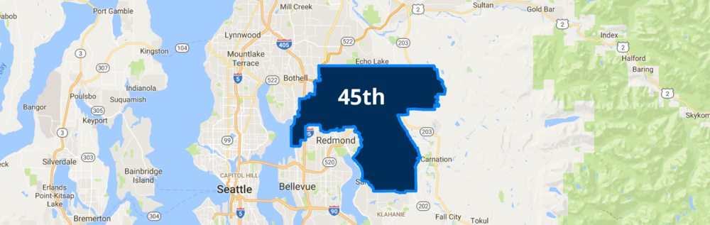 45th_District_Page.png