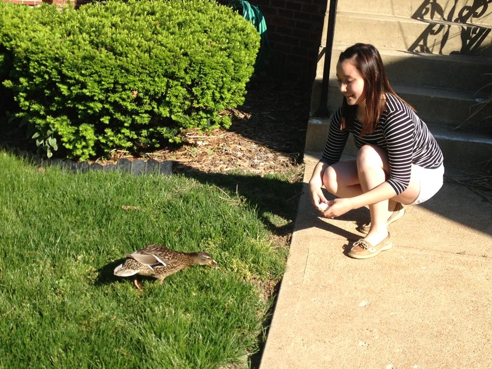 This is literally the only photo of myself I have from this season of life - 2 weeks post-op and feeding a duck that wandered into my parents' yard.