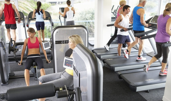 photodune-12459120-elevated-view-of-busy-gym-with-people-exercising-on-machines-xs-556x330.jpg