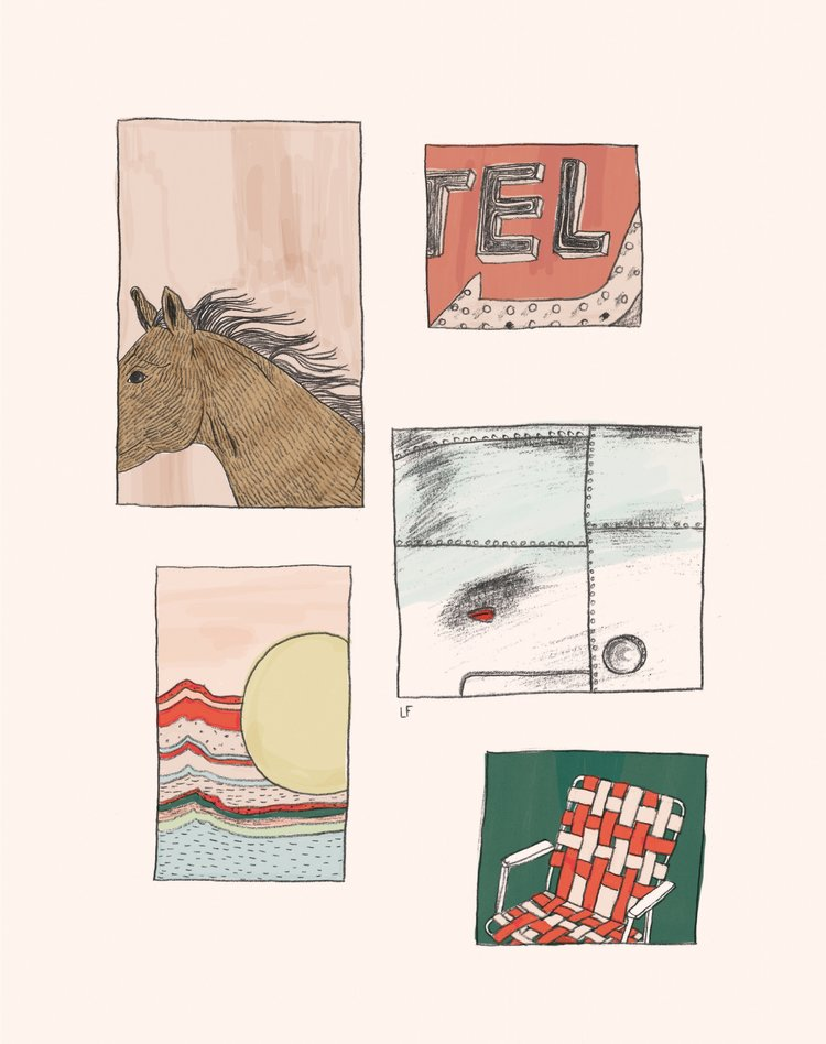 horse+collage+final.jpg