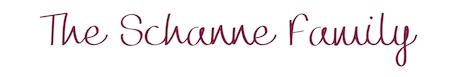 Schanne Logo.png