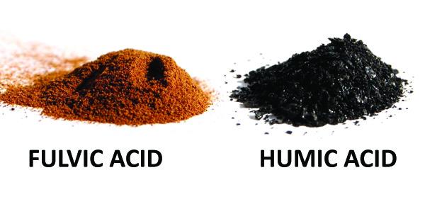 fulvic humic.jpg